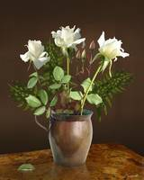 White Roses in Copper Vase