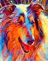 Collie Watercolor