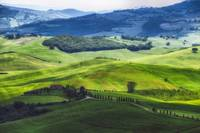 Rolling Hills with Farms, Val d'Orcia, Tuscany, It