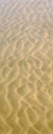 Calamus Patterns