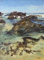 Sawtell Beach Surf and Rockpools