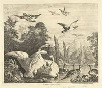 Swans and ducks in a bird pond, Peter Casteels (II