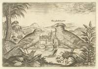 Two birds in a landscape, Adriaen Collaert, 1598 -