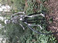 Skeleton going for a bike ride