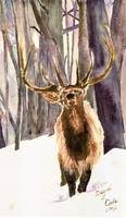 ELK IN SNOW - 12 X 18 - WATERCOLOR