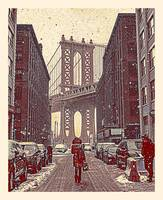 Brooklyn New York in Winter, United States 2