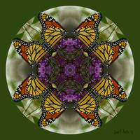Butterfly Garden Kaleidoscope Abstract Wall Art