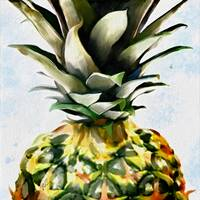 Pineapple Dreams