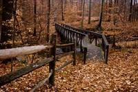 Blue Hen Falls Walking Bridge