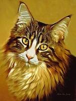 Decorative Digital Painting Maine Coon  A71518