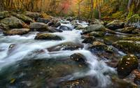 Greenbriar Area, Smoky Mountains National Park