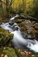 Roaring Forks, Smoky Mountains National Park