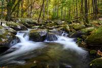 Tremont, Smoky Mountains National Park