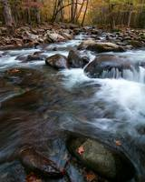 Greenbriar, Great Smoky Mountains National Park