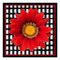 Red Flower with Criss-Cross