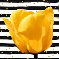 Tulip with stripes and gold dots- quirky for etsy