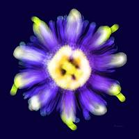 Abstract Passion Flower Violet Blue  Green 002b