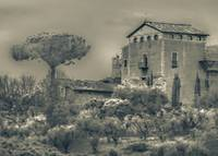 Rural Rome Scene Photo Illustration