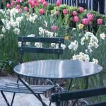 """""""Bryant Park Spring"""" by JohnFraissinet"""