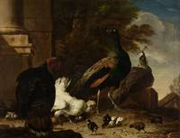 A Hen with Peacocks and a Turkey, Melchior d' Hond