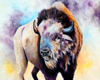 Idaho Buffalo Bull