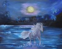 Stallion in the Moonlight