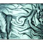 """""""Morph of the Tiger"""" by Lisa_Pluchino"""