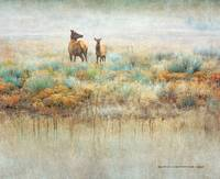 misty meadow mother and calf elk diptych