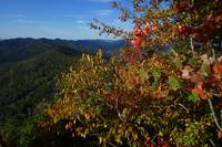 Fall colors in Cumberland Gap