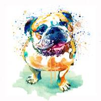 Watercolor Bulldog