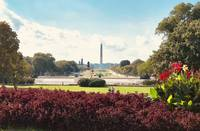 National Mall & Washington Monument