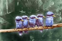 Little Birds On A Branch