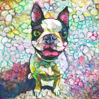 Joy Flower Puppy Boston Terrier
