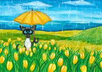 April showers Siamese Cat
