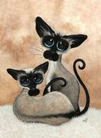 Siamese Siblings Cats