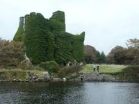 Irish Castle, Dee Oberle