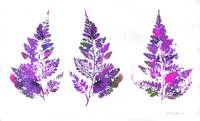 Purple Fern Leaves Abstract Triptych