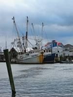 Old Trawlers