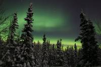 Aurora borealis in Fairbanks, Alaska