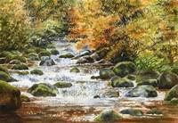 Autumn River Rocks 1