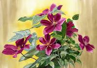 red violet clematis with gold background 10.5 x 15