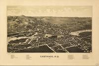 Aerial View of Carthage, New York (1888)