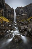 Svartifoss Waterfall in Iceland by Cody York_115A3