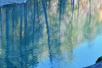Impressionist reflections in North Fork Skokomish