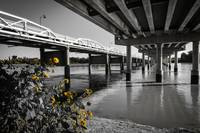 Jenks Flowers and Bridges
