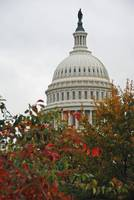 Fall Capitol Building