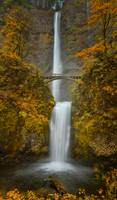 Multnomah Falls in Fall