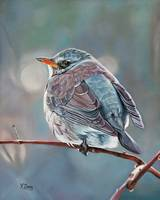 Original oil painting Wild little bird