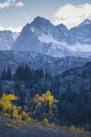 Sierra Nevadas and Fall Colors, Bishop Creek