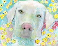 Maisie White Labrador Retriever Flower Dog